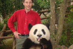 2008-China-Chengdu_Panda